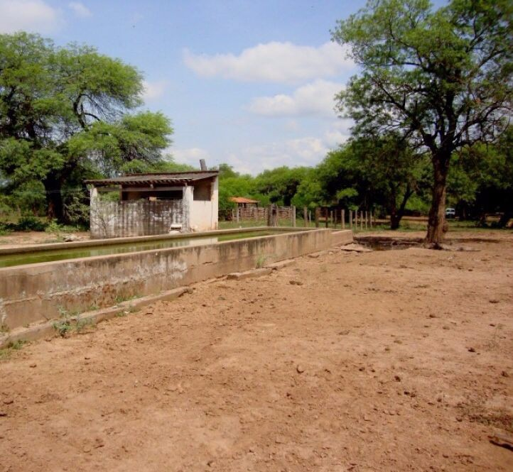 Terreno en Venta Carretera al Paraguay Foto 6