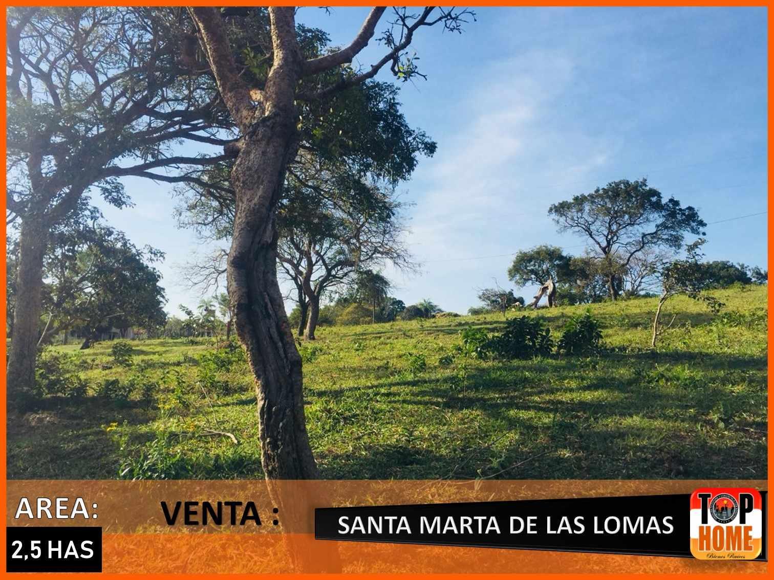 Terreno en Venta SANTA MARTA DE LAS LOMAS Foto 10