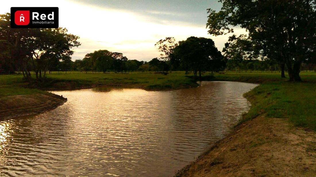 Terreno en Venta TERRENOS EN URB. CAMPESTRE PORONGUITO Foto 6