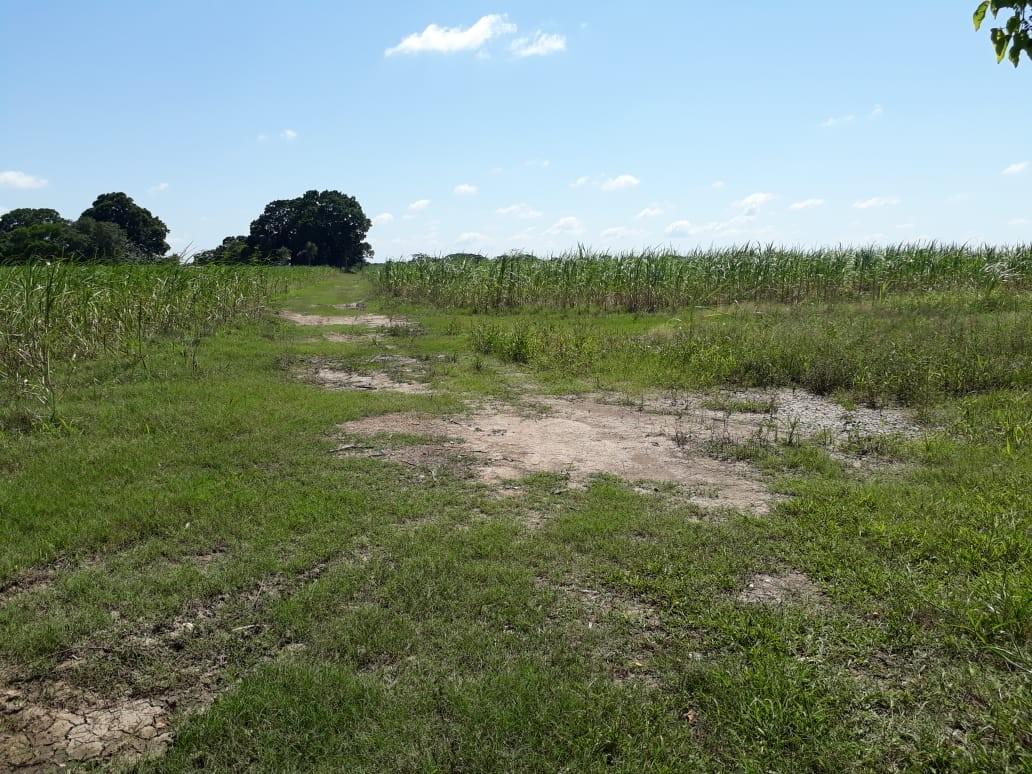 Terreno en Venta VENTURA MALL  Foto 4