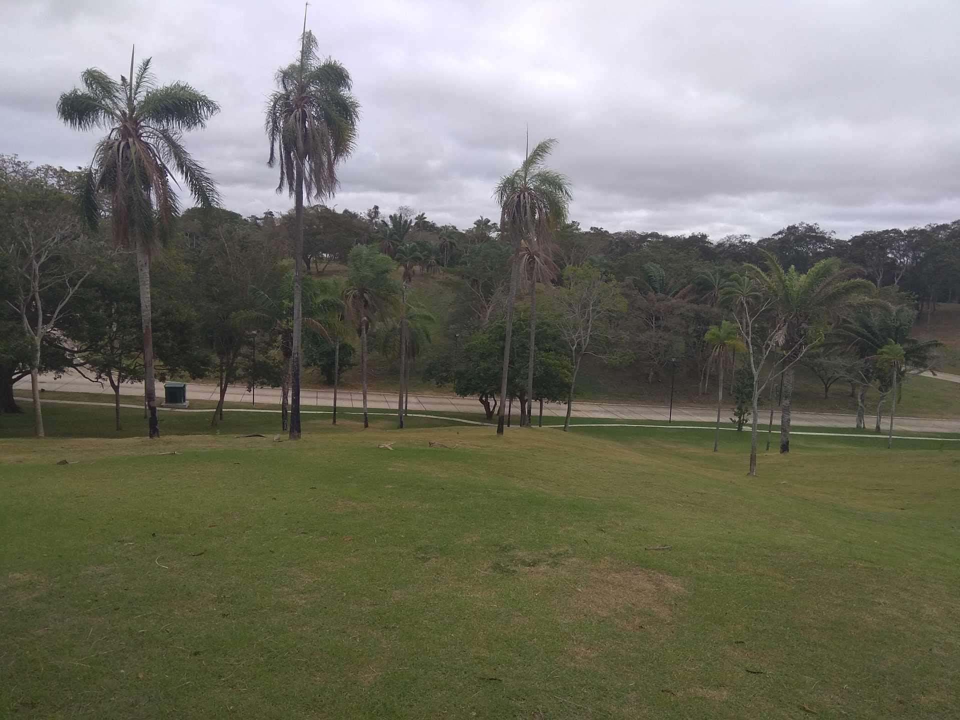 Terreno en Venta Urubo. Condominio La Hacienda Foto 3