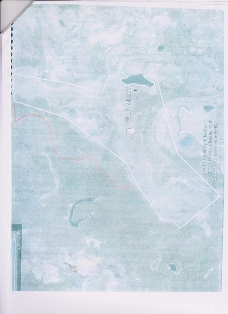 Terreno en Venta Beni, Provincia: Gral. José Ballivian, Sección: Primera, Cantón: Reyes (Reyes) Beni Foto 4