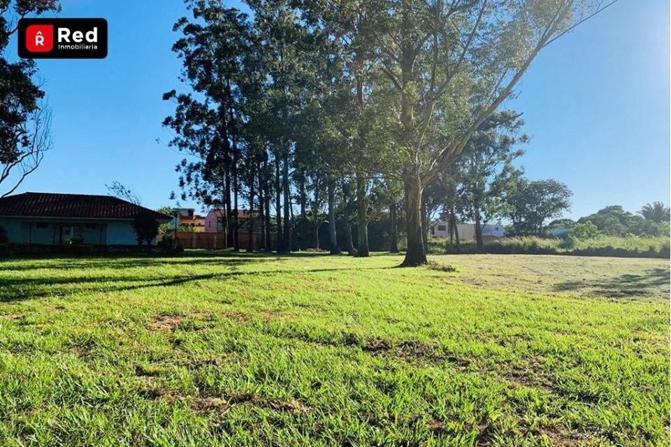 Terreno en Venta TERRENO EN DOBLE VIA LA GUARDIA KM 13 Foto 7