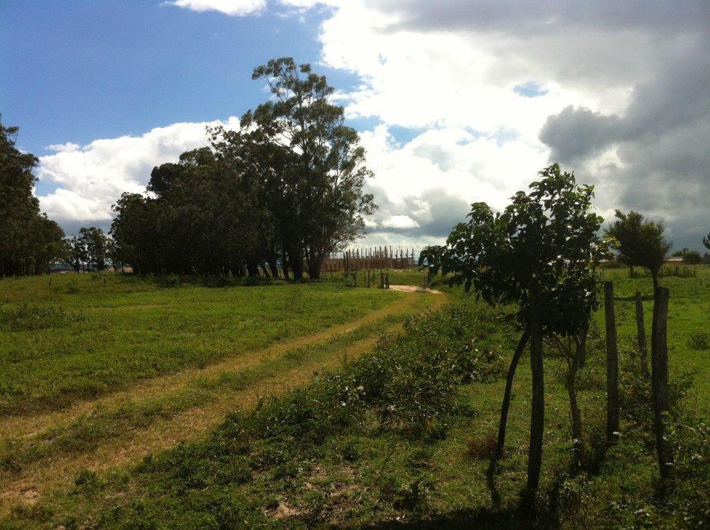 Terreno en Venta Km 12 Doble vía a la Guardia y 3km ida a Camiri Foto 2