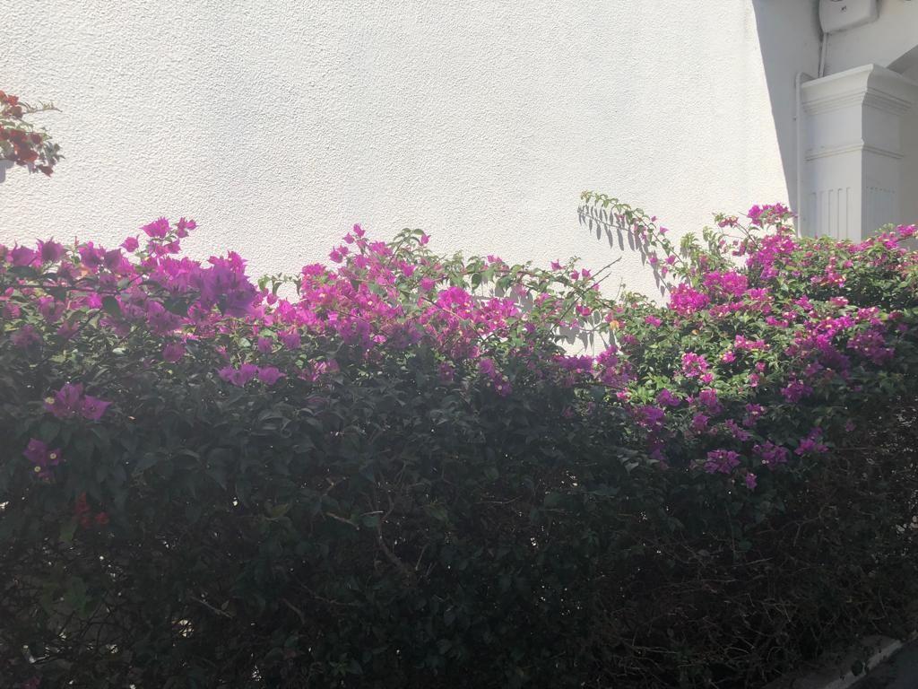 Casa en Alquiler Av Piraí y 4to anillo  Foto 9