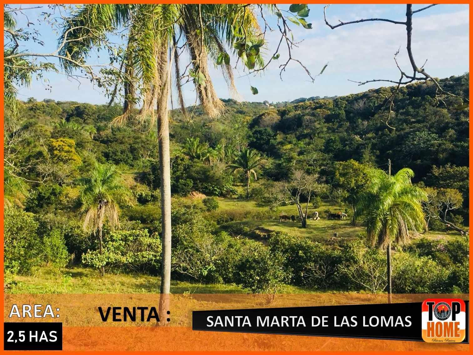 Terreno en Venta SANTA MARTA DE LAS LOMAS Foto 3