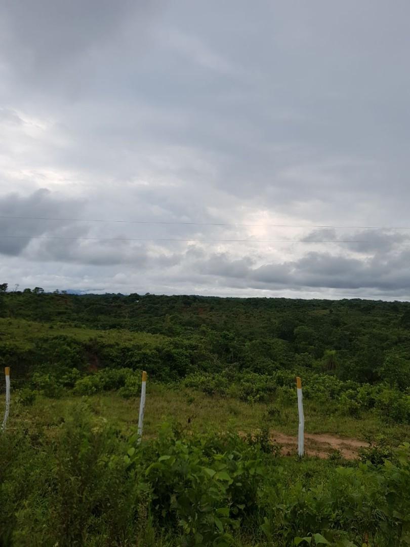 Quinta propiedad agrícola en Venta En Venta #propiedad #ganadera zona #terebinto Foto 11