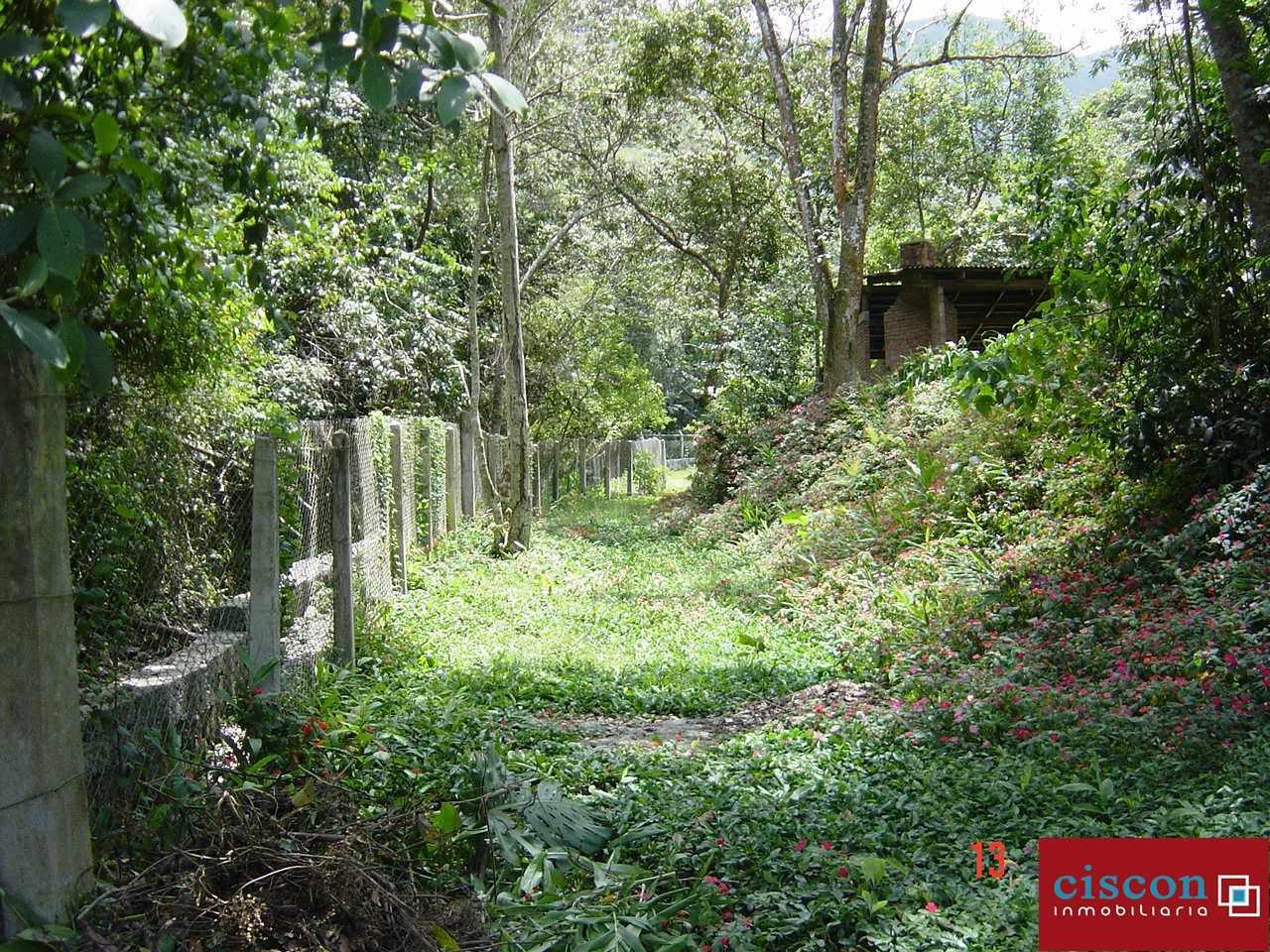 Casa en Venta Chulumani, a 15 minutos del pueblo. Foto 8