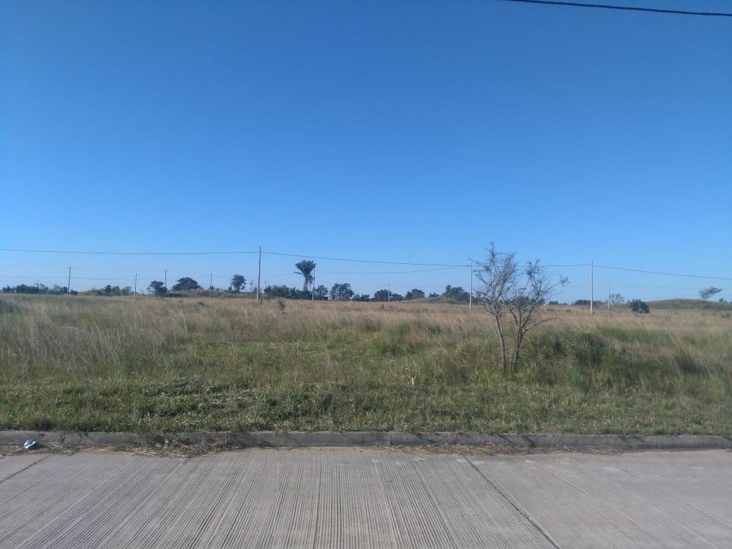 Terreno en Venta CUIDAD DEL URUBO DE TECHO Foto 13