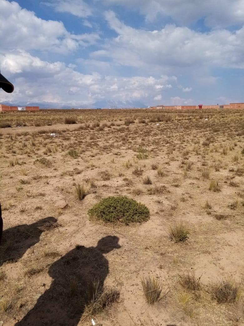 Terreno en Venta El Alto, Zona Ventilla, Urbanización Los Rosales Foto 4