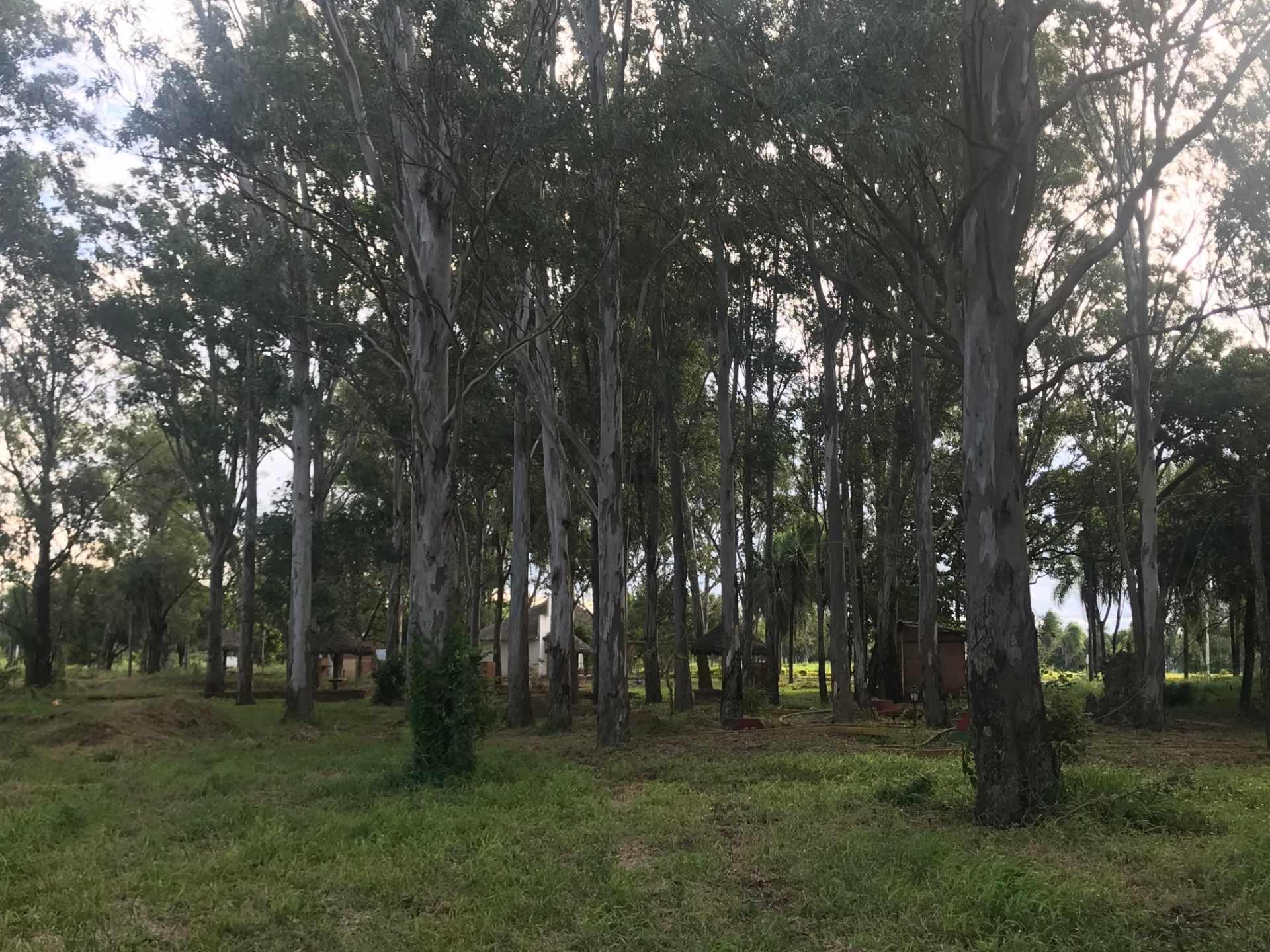 Terreno en Venta Complejo Campestre Norte, Km 23 Carretera al Norte.  Foto 20