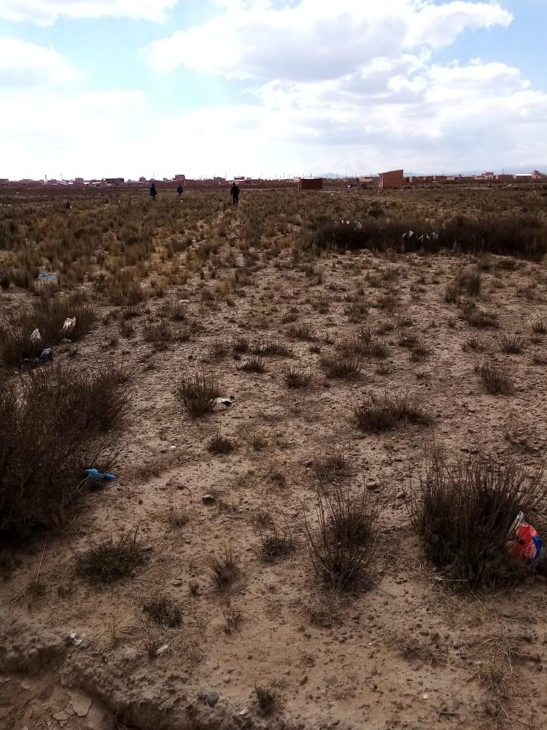 Terreno en Venta El Alto, Zona Ventilla, Urbanización Los Rosales Foto 3