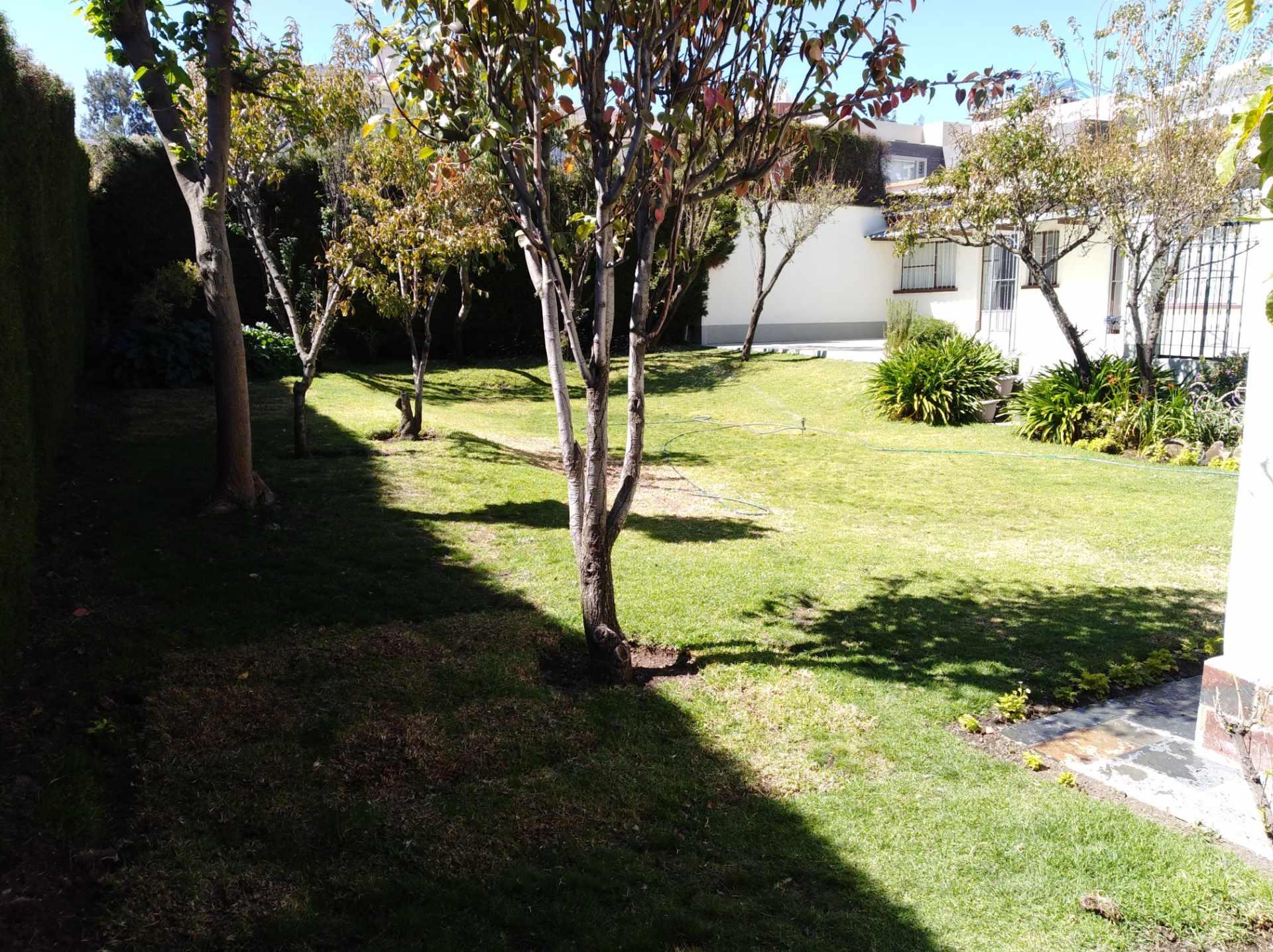 Casa en Alquiler CALACOTO calle 16 a 1/2 cuadra de la Av. Julio C. Patiño.  Foto 8